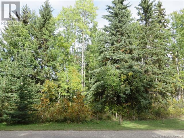 6312 47 Avenue, Rocky Mountain House, Alberta  T4T 1G3 - Photo 28 - CA0093428