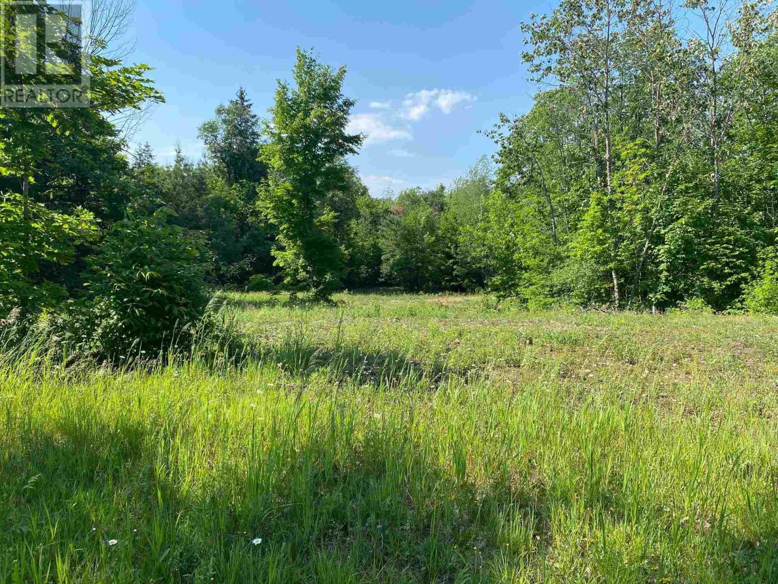 195 Craig Rd, N Grenville, Ontario  K0G 1N0 - Photo 3 - K21001741