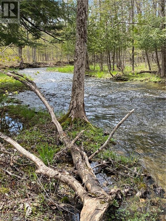 062653 Sunny Valley Road, Georgian Bluffs, Ontario  N4K 5N6 - Photo 3 - 40075572