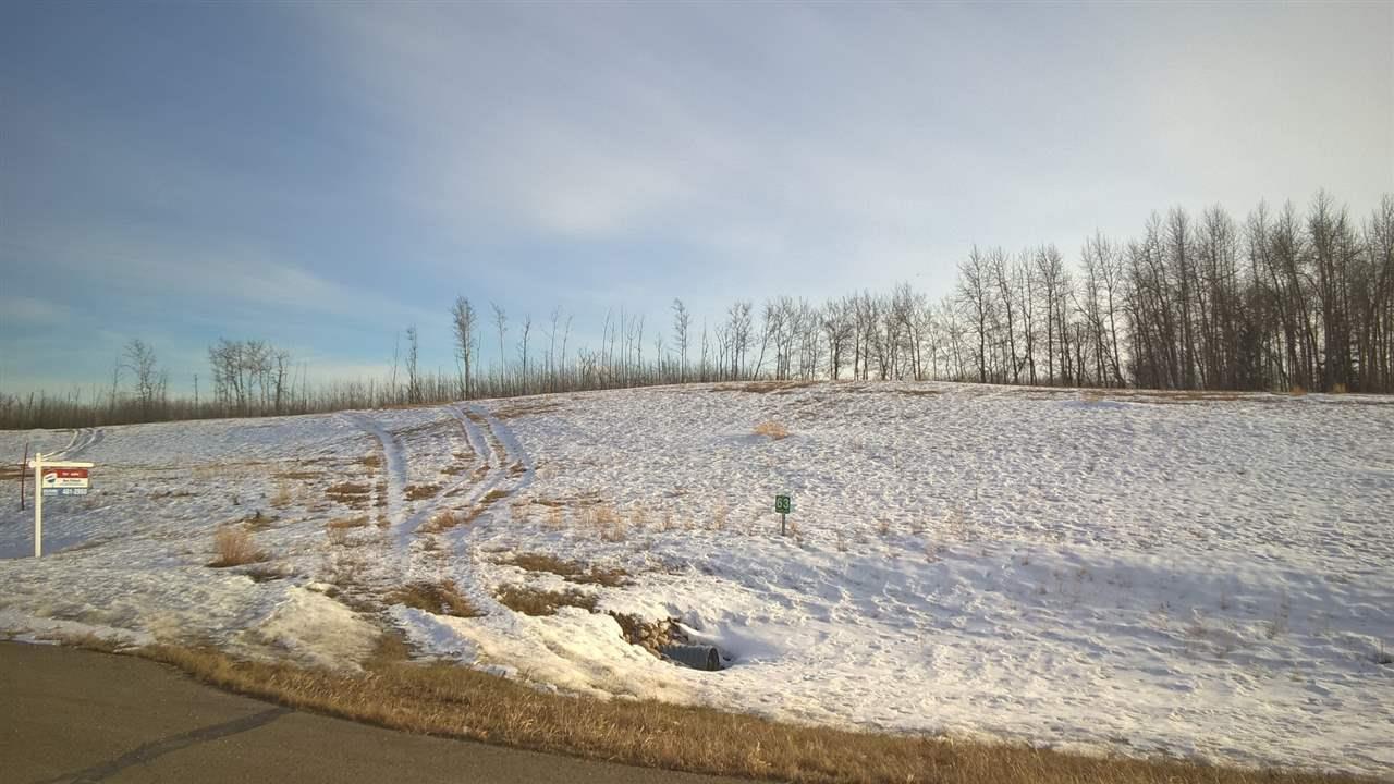 63 25527 Twp Road 511a Rd, Rural Parkland County, Alberta  T7Y 1B8 - Photo 6 - E4235764