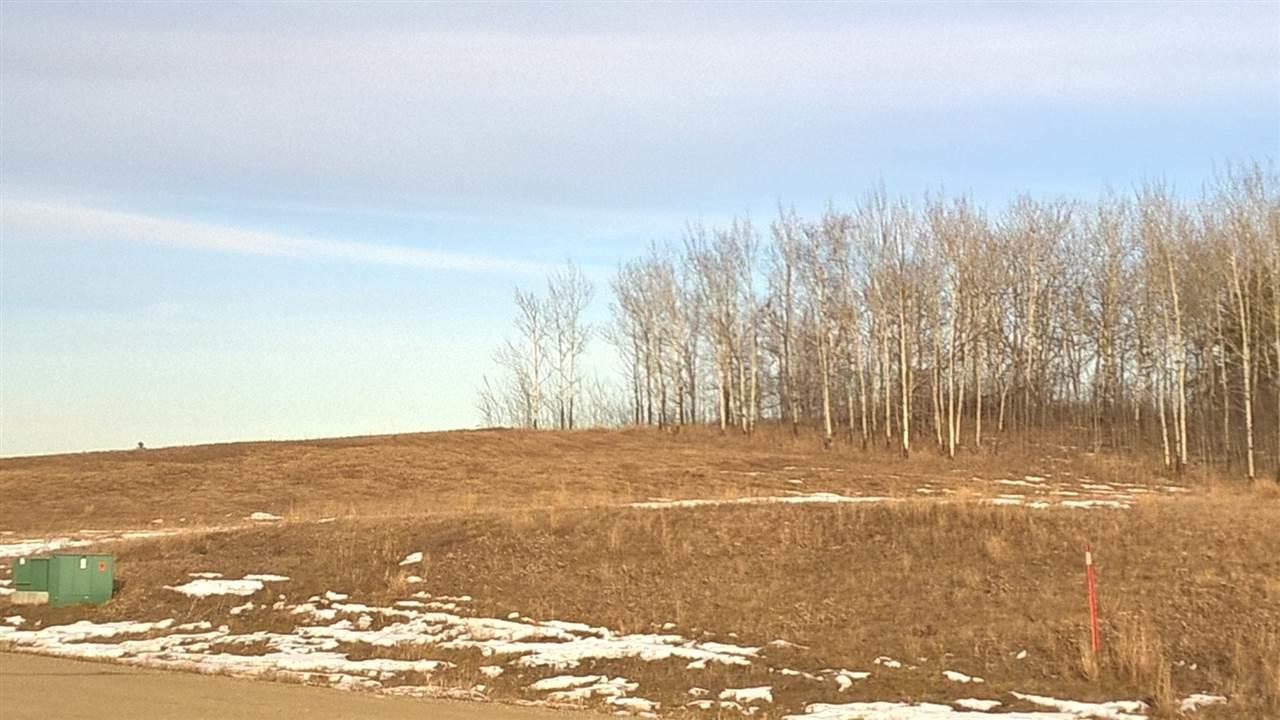 56 25527 Twp Rd 511a, Rural Parkland County, Alberta  T7Y 1B8 - Photo 5 - E4235771