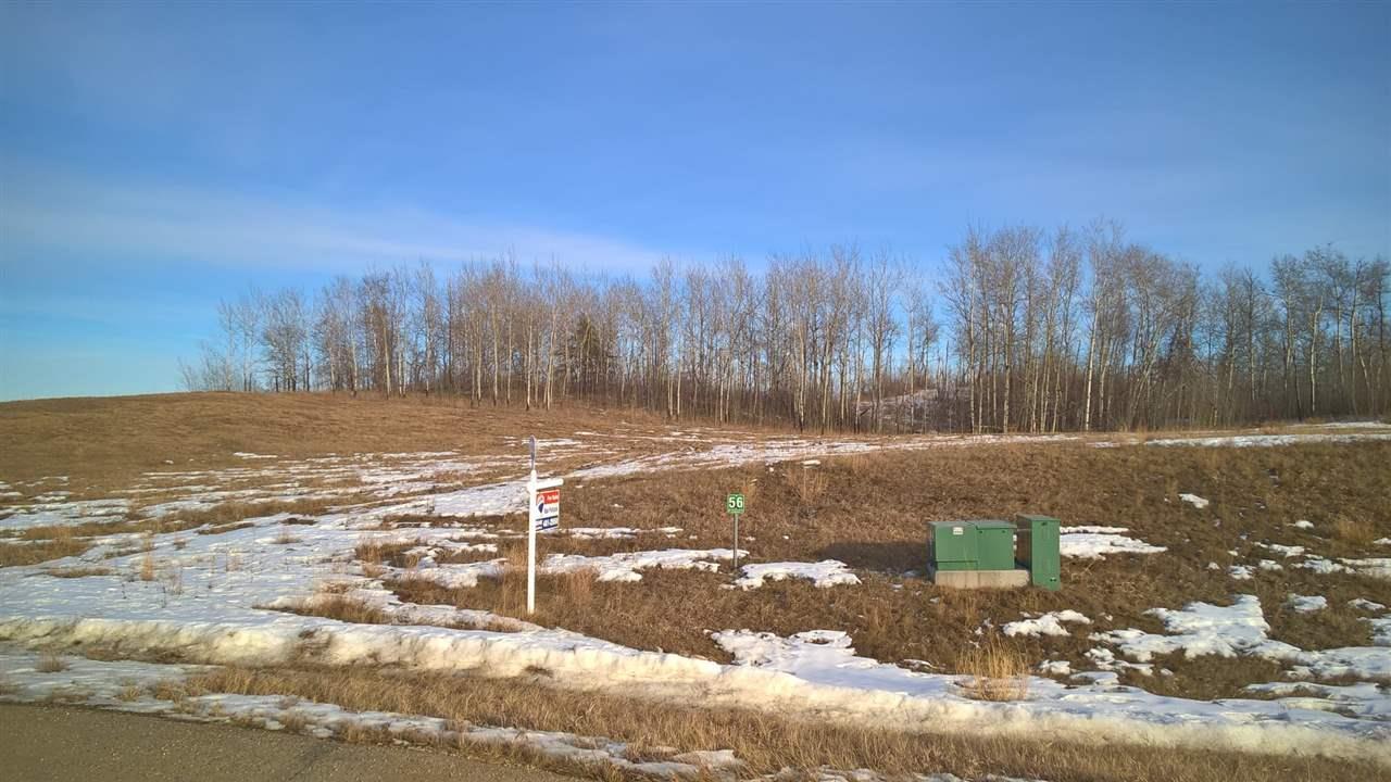 56 25527 Twp Rd 511a, Rural Parkland County, Alberta  T7Y 1B8 - Photo 6 - E4235771