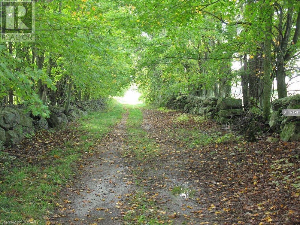 1614 Horseshoe Valley Road E, Oro-Medonte, Ontario  L0K 1E0 - Photo 6 - 40094808