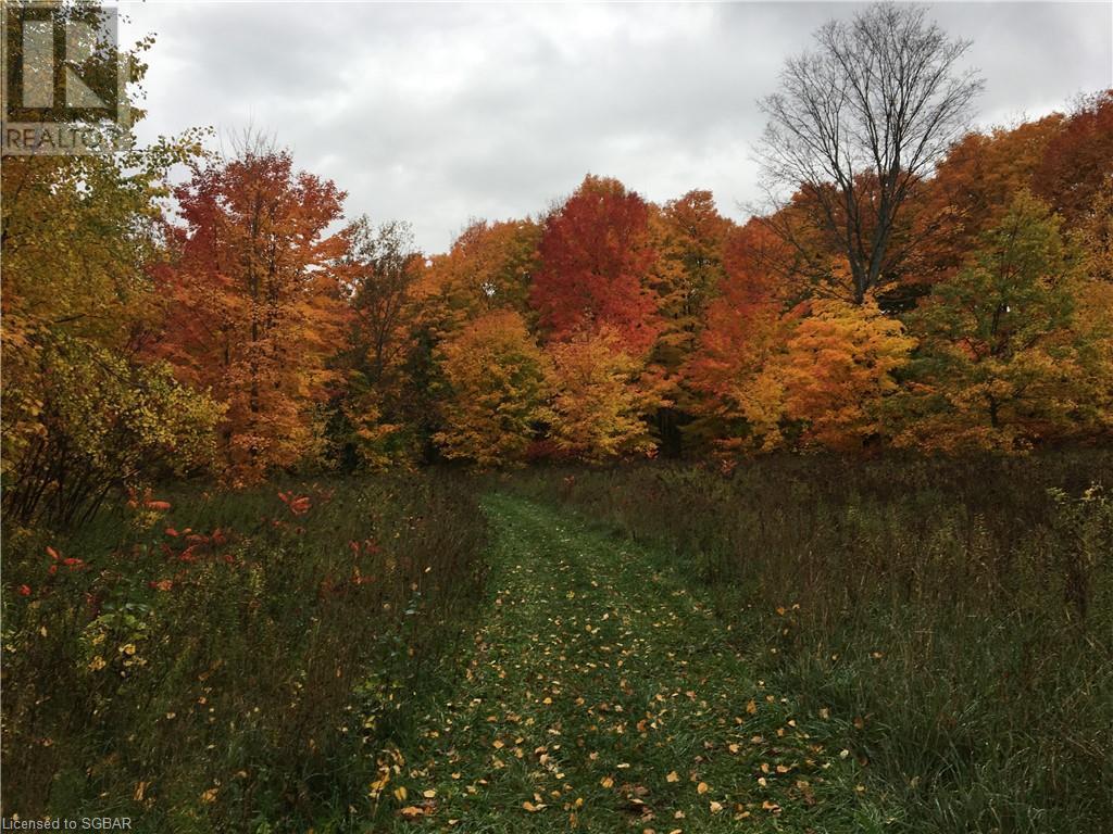 1614 Horseshoe Valley Road E, Oro-Medonte, Ontario  L0K 1E0 - Photo 12 - 40094808