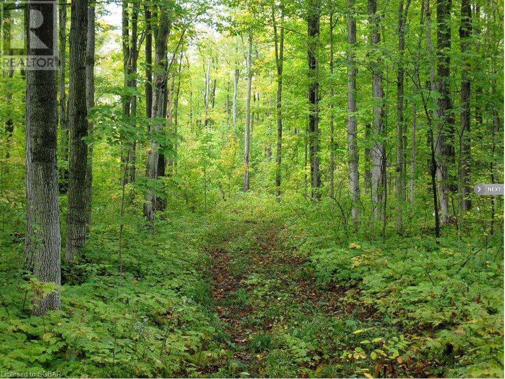 1614 Horseshoe Valley Road E, Oro-Medonte, Ontario  L0K 1E0 - Photo 8 - 40094808