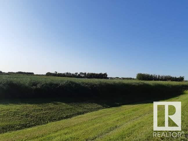 54416- Rr 261, Rural Sturgeon County, Alberta  T8R 1Z5 - Photo 5 - E4149973
