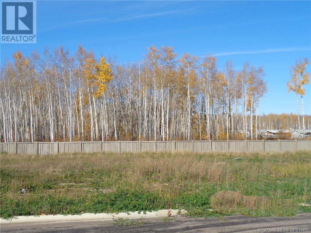 13 Bear Creek Drive, High Level, Alberta  T0H 1Z0 - Photo 1 - GP214486