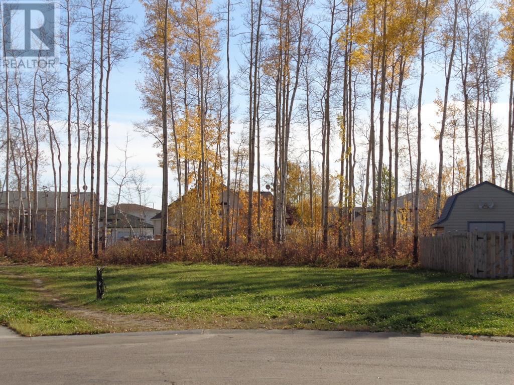 5 Birch  Close, High Level, Alberta  T0H 1Z0 - Photo 1 - A1027463