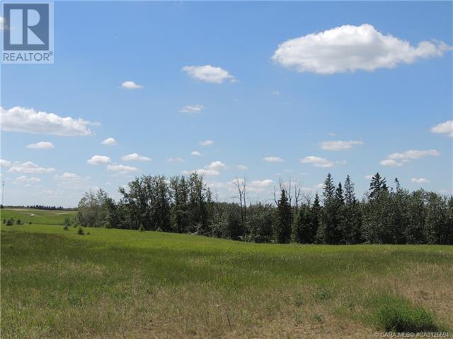 150 Wolf Run Drive, Rural Ponoka County, Alberta  T4J 0B3 - Photo 5 - CA0126694