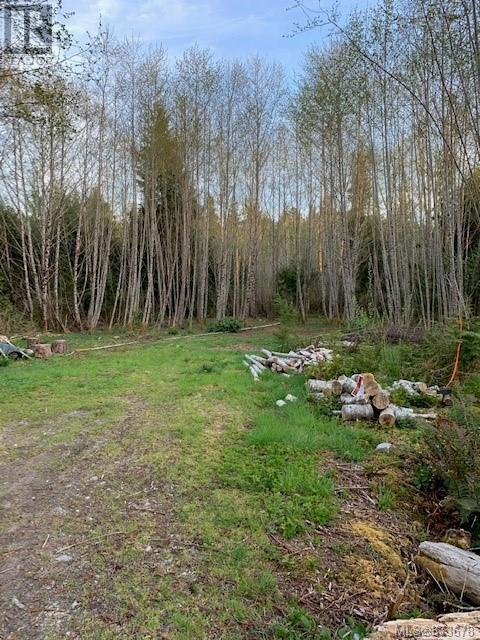 Lot 1 Binnacle Rd, Bamfield, British Columbia  V0R 1B0 - Photo 1 - 873678