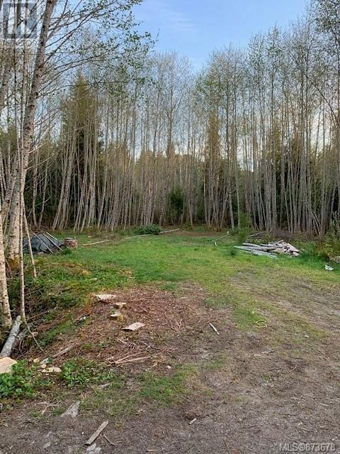 Lot 1 Binnacle Rd, Bamfield, British Columbia  V0R 1B0 - Photo 3 - 873678
