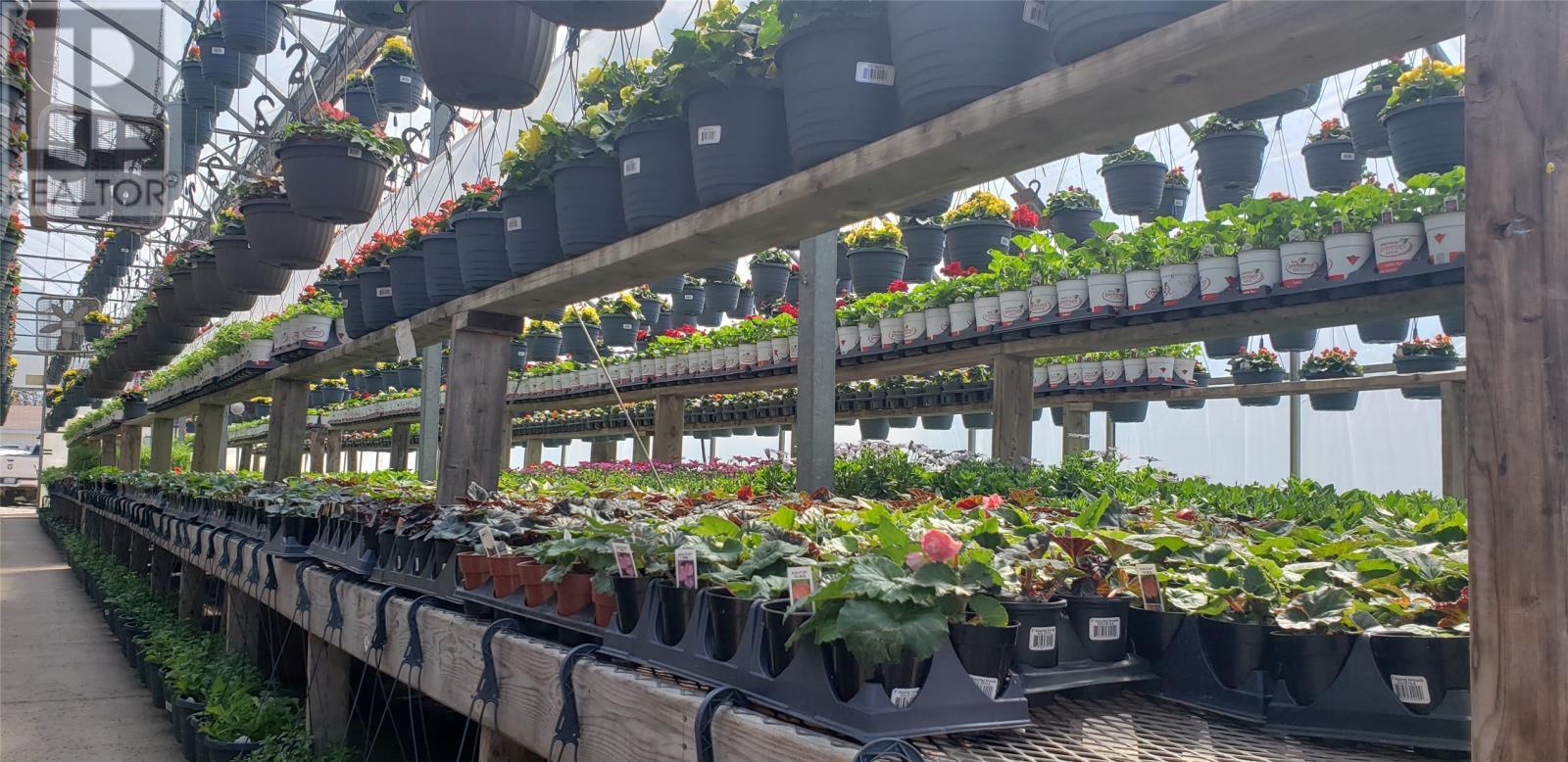 669 Creston Boulevard, Marystown, Newfoundland & Labrador  A0E 2M0 - Photo 23 - 1229607