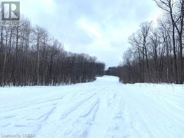 Lt 52 Whispering Pine Circle, Tiny, Ontario  L9M 0C2 - Photo 11 - 40076478