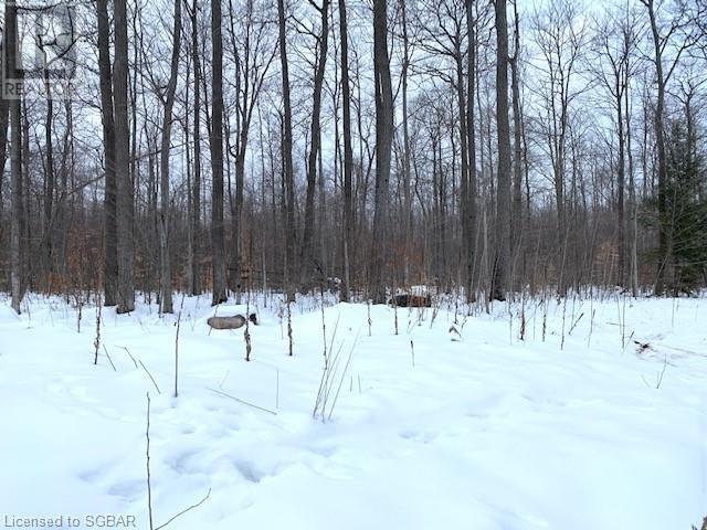 Lt 51 Whispering Pine Circle, Tiny, Ontario  L9M 0C2 - Photo 11 - 40076436