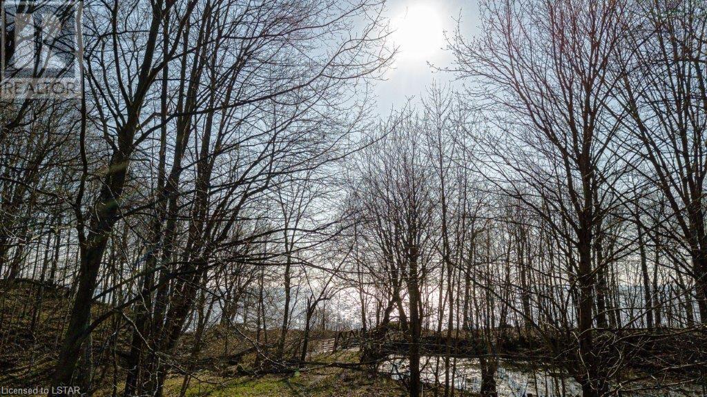 7270 Coyne Road, Wallacetown, Ontario  N0L 2M0 - Photo 4 - 40103513