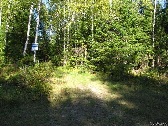 Vacant Land Enterprise Road, Enterprise, New Brunswick  E7G 1M8 - Photo 2 - NB057009