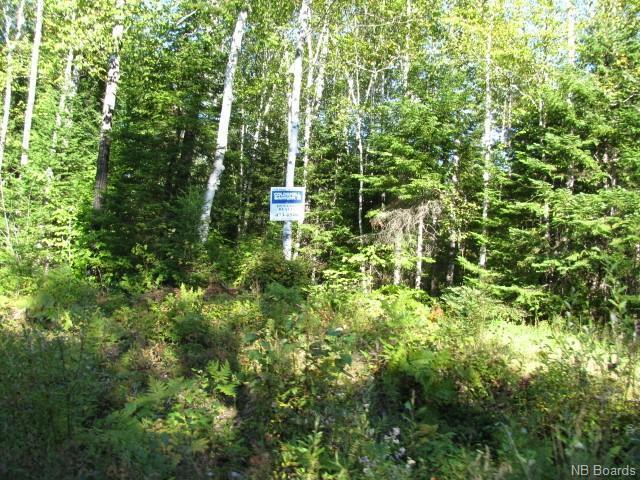 Vacant Land Enterprise Road, Enterprise, New Brunswick  E7G 1M8 - Photo 3 - NB057009