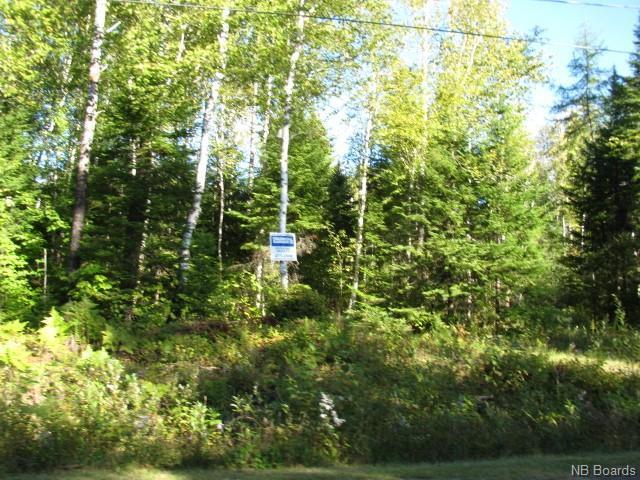 Vacant Land Enterprise Road, Enterprise, New Brunswick  E7G 1M8 - Photo 4 - NB057009