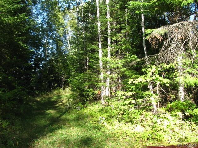 Vacant Land Enterprise Road, Enterprise, New Brunswick  E7G 1M8 - Photo 5 - NB057009