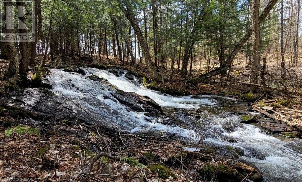 1021 Chetwynd Road, Burk's Falls, Ontario  P0A 1C0 - Photo 45 - 40104430