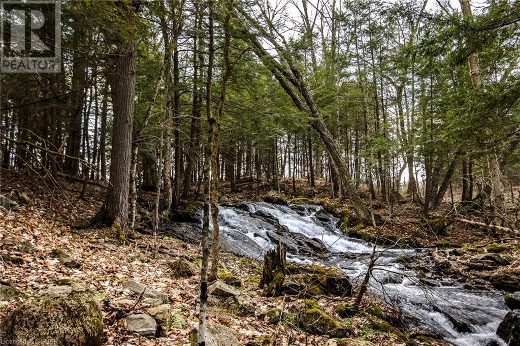 1021 Chetwynd Road, Burk's Falls, Ontario  P0A 1C0 - Photo 24 - 40104430
