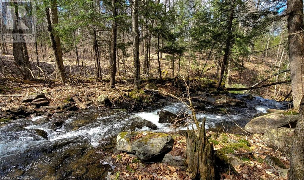 1021 Chetwynd Road, Burk's Falls, Ontario  P0A 1C0 - Photo 46 - 40104430