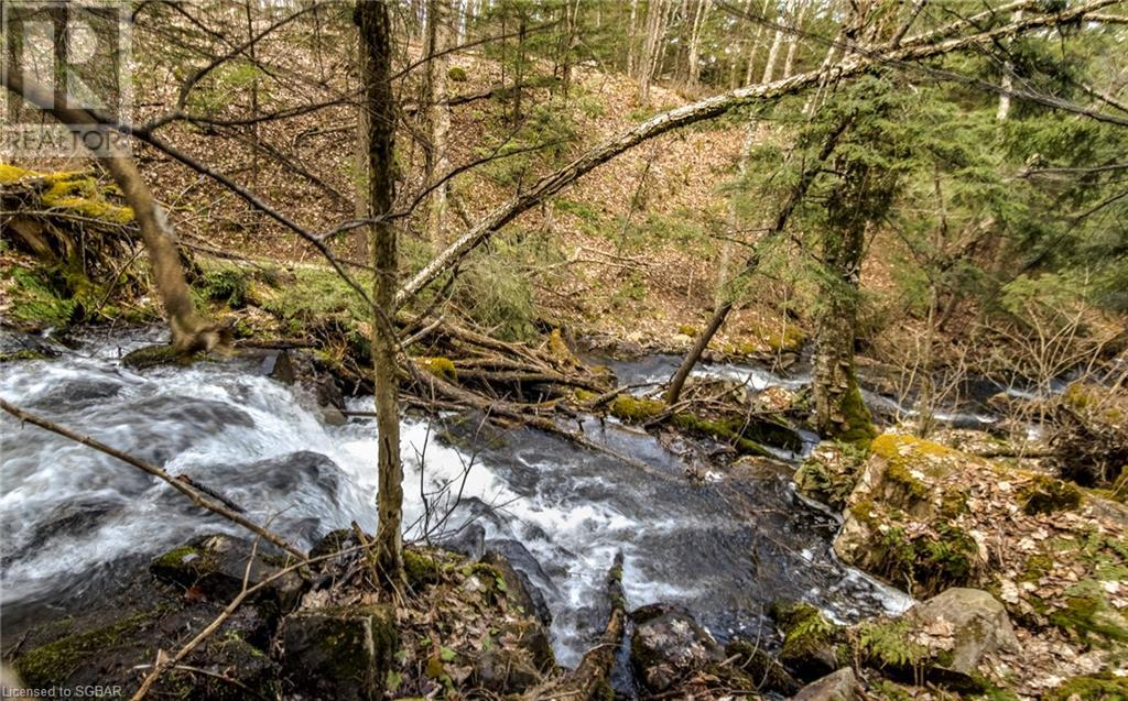 1021 Chetwynd Road, Burk's Falls, Ontario  P0A 1C0 - Photo 22 - 40104430