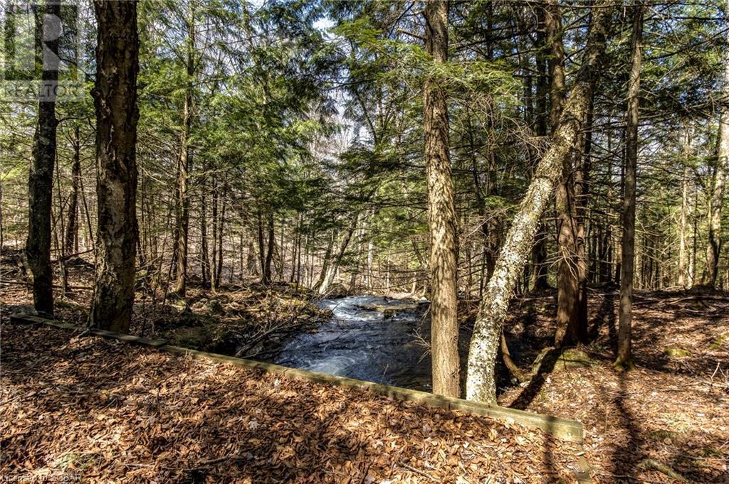 1021 Chetwynd Road, Burk's Falls, Ontario  P0A 1C0 - Photo 18 - 40104430