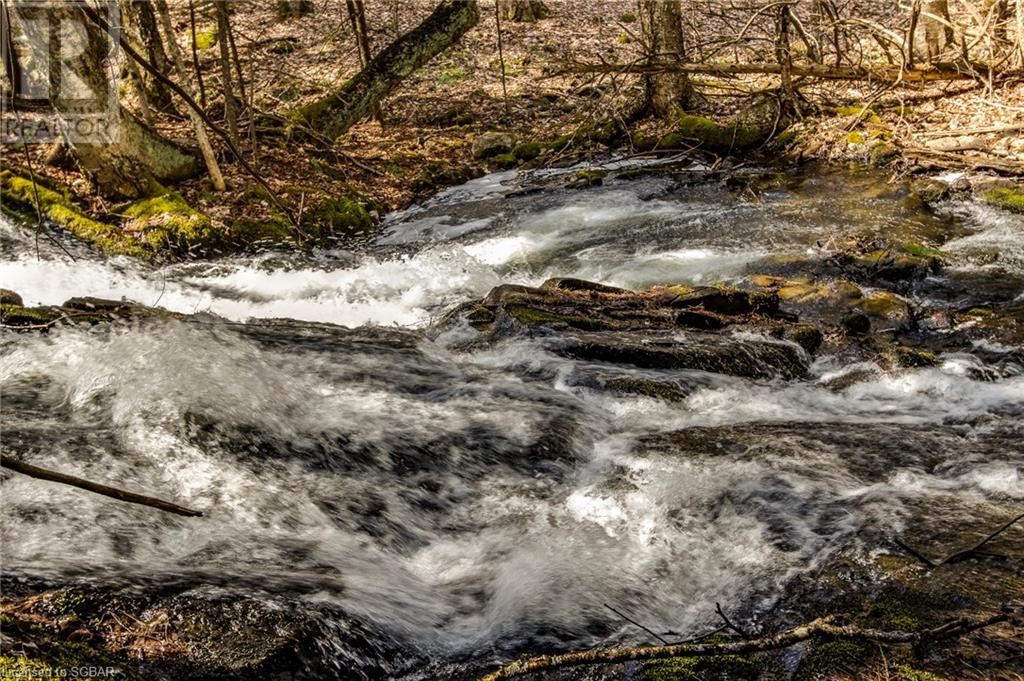 1021 Chetwynd Road, Burk's Falls, Ontario  P0A 1C0 - Photo 21 - 40104430
