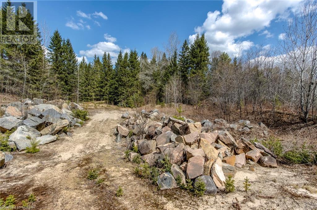 1021 Chetwynd Road, Burk's Falls, Ontario  P0A 1C0 - Photo 36 - 40104430