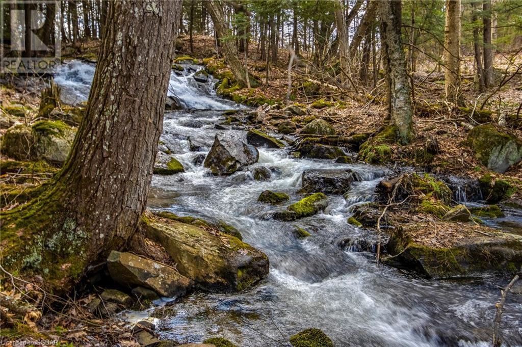 1021 Chetwynd Road, Burk's Falls, Ontario  P0A 1C0 - Photo 23 - 40104430
