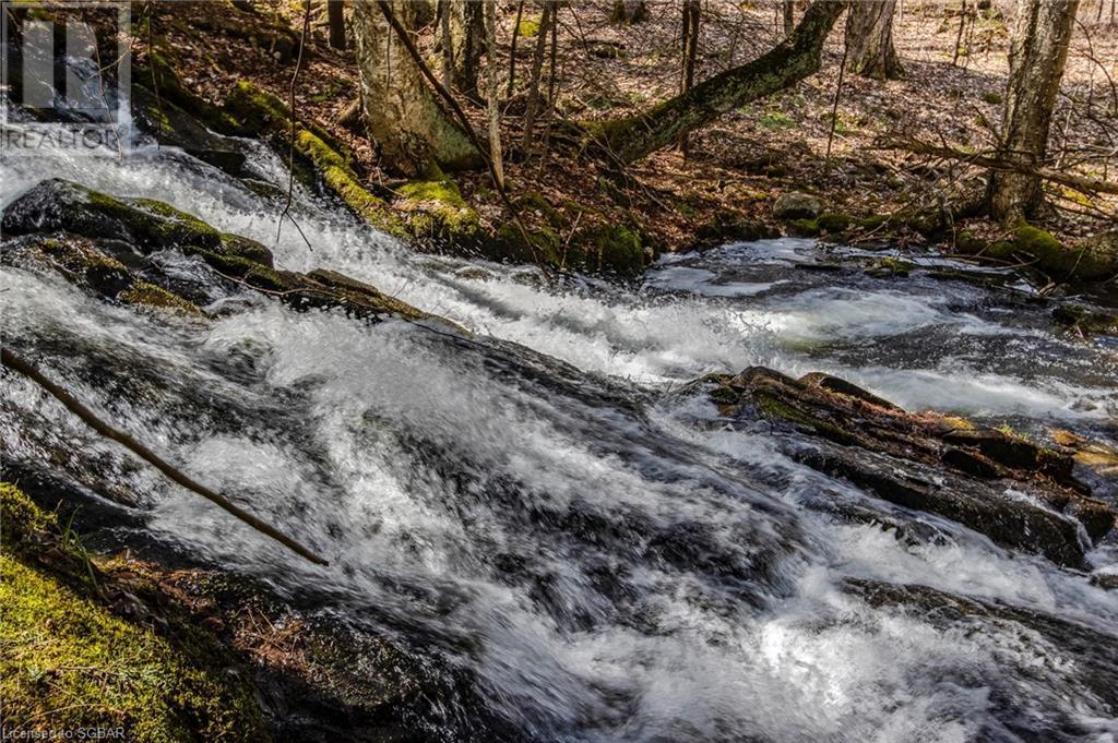 1021 Chetwynd Road, Burk's Falls, Ontario  P0A 1C0 - Photo 20 - 40104430