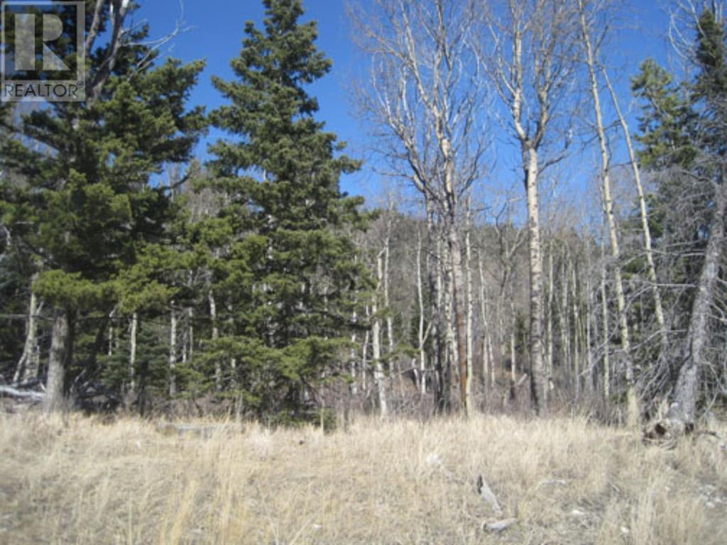 48 Kananaskis Way, Coleman, Alberta  T0K 0M0 - Photo 11 - A1067597