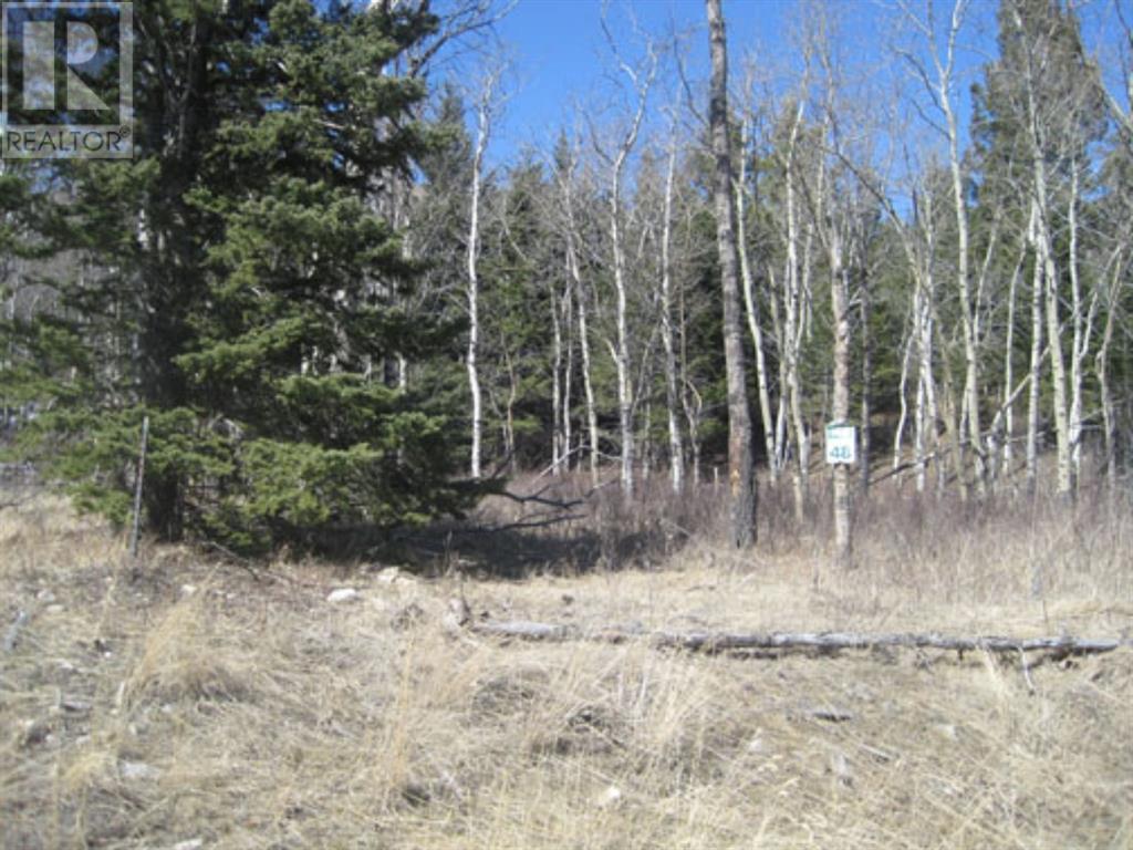48 Kananaskis Way, Coleman, Alberta  T0K 0M0 - Photo 4 - A1067597