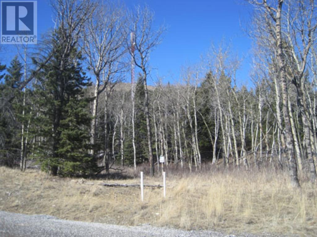 48 Kananaskis Way, Coleman, Alberta  T0K 0M0 - Photo 3 - A1067597