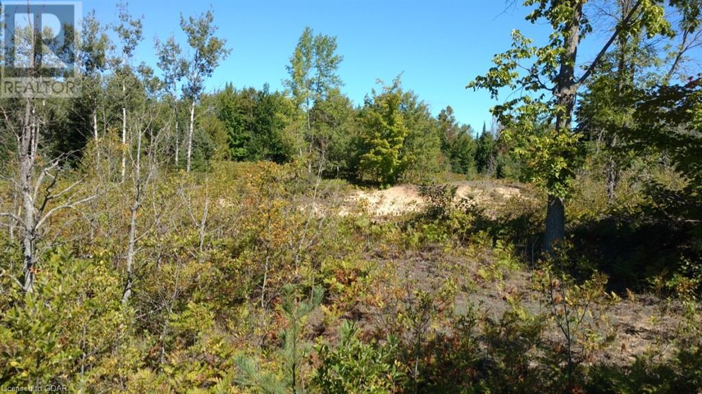 Lot 9-10 Con 2 (West Road), North Bruce Peninsula, Ontario  N0H 1W0 - Photo 5 - 40105797