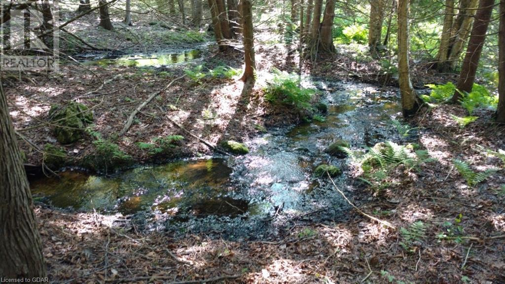 Lot 9-10 Con 2 (West Road), North Bruce Peninsula, Ontario  N0H 1W0 - Photo 10 - 40105797