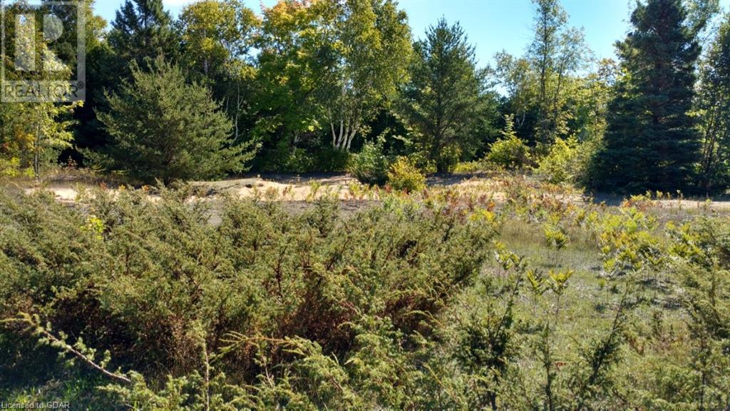 Lot 9-10 Con 2 (West Road), North Bruce Peninsula, Ontario  N0H 1W0 - Photo 9 - 40105797