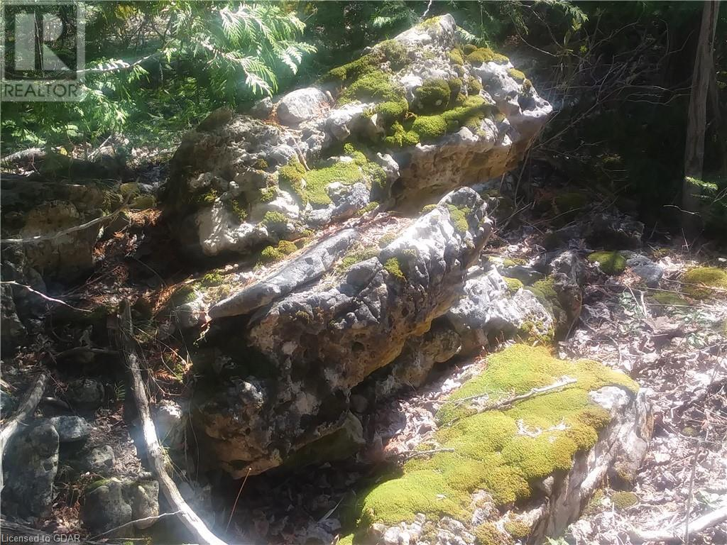 Lot 9-10 Con 2 (West Road), North Bruce Peninsula, Ontario  N0H 1W0 - Photo 11 - 40105797