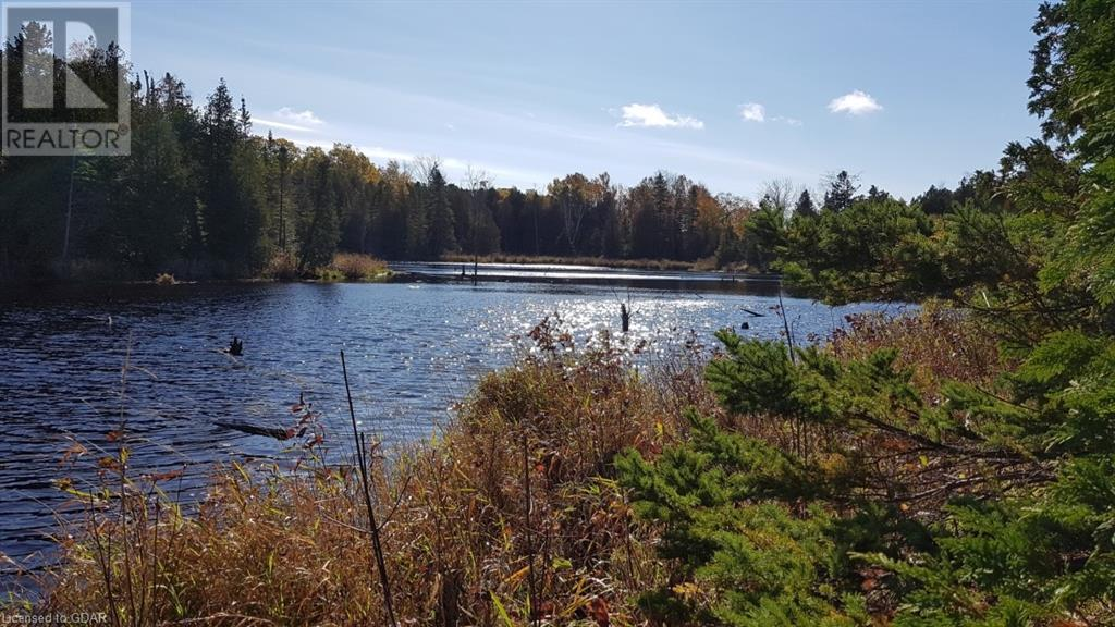 Lot 9-10 Con 2 (West Road), North Bruce Peninsula, Ontario  N0H 1W0 - Photo 4 - 40105797