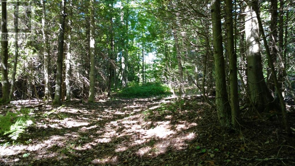 Lot 9-10 Con 2 (West Road), North Bruce Peninsula, Ontario  N0H 1W0 - Photo 7 - 40105797