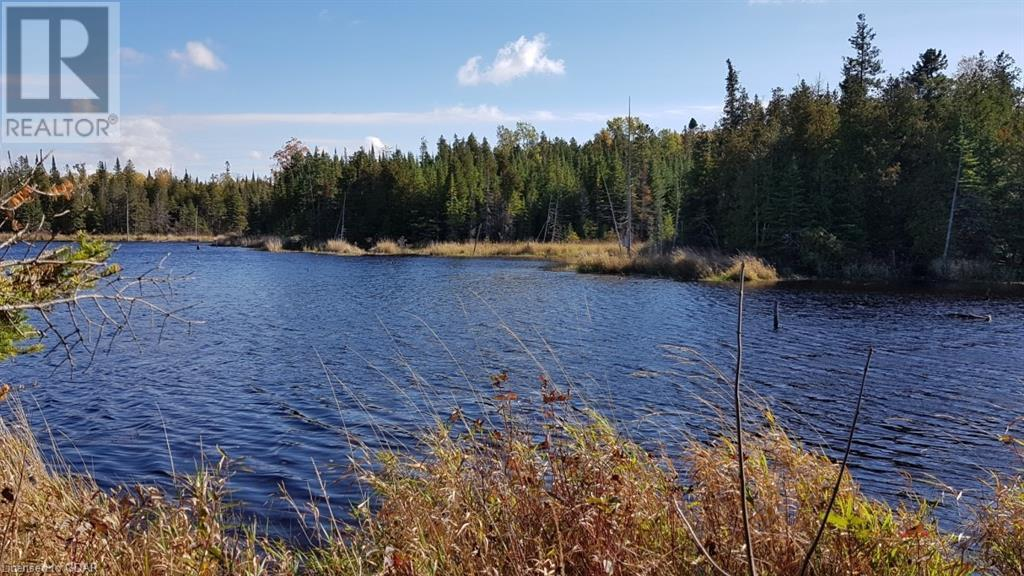 Lot 9-10 Con 2 (West Road), North Bruce Peninsula, Ontario  N0H 1W0 - Photo 3 - 40105797