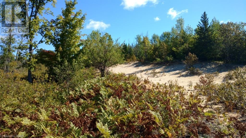 Lot 9-10 Con 2 (West Road), North Bruce Peninsula, Ontario  N0H 1W0 - Photo 6 - 40105797
