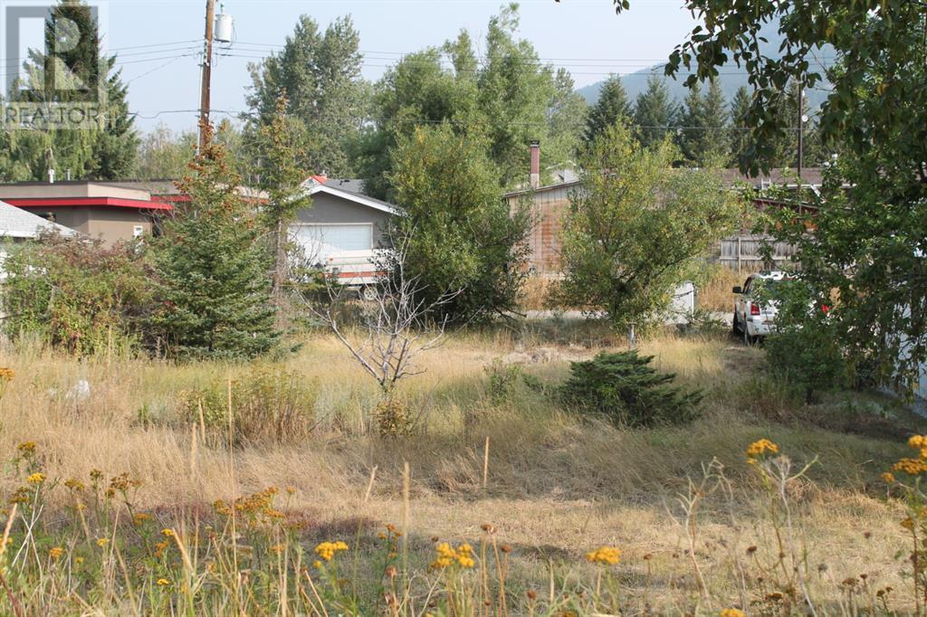 11333 20 Avenue, Blairmore, Alberta  T0K 0E0 - Photo 1 - A1104042