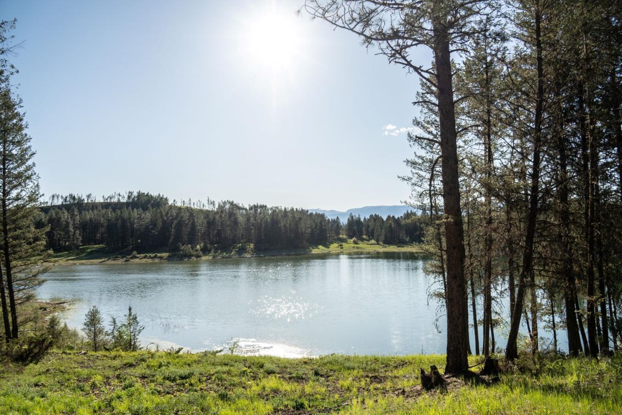 Dl 15050 Highway 93/95, Wasa, British Columbia  V0B 2K0 - Photo 4 - 2458394