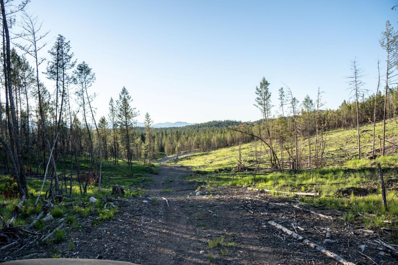 Dl 15050 Highway 93/95, Wasa, British Columbia  V0B 2K0 - Photo 8 - 2458394