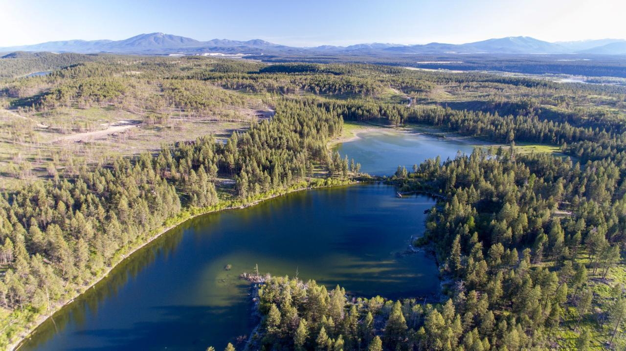 Dl 15050 Highway 93/95, Wasa, British Columbia  V0B 2K0 - Photo 17 - 2458394