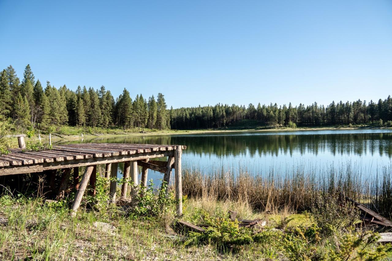Dl 15050 Highway 93/95, Wasa, British Columbia  V0B 2K0 - Photo 7 - 2458394