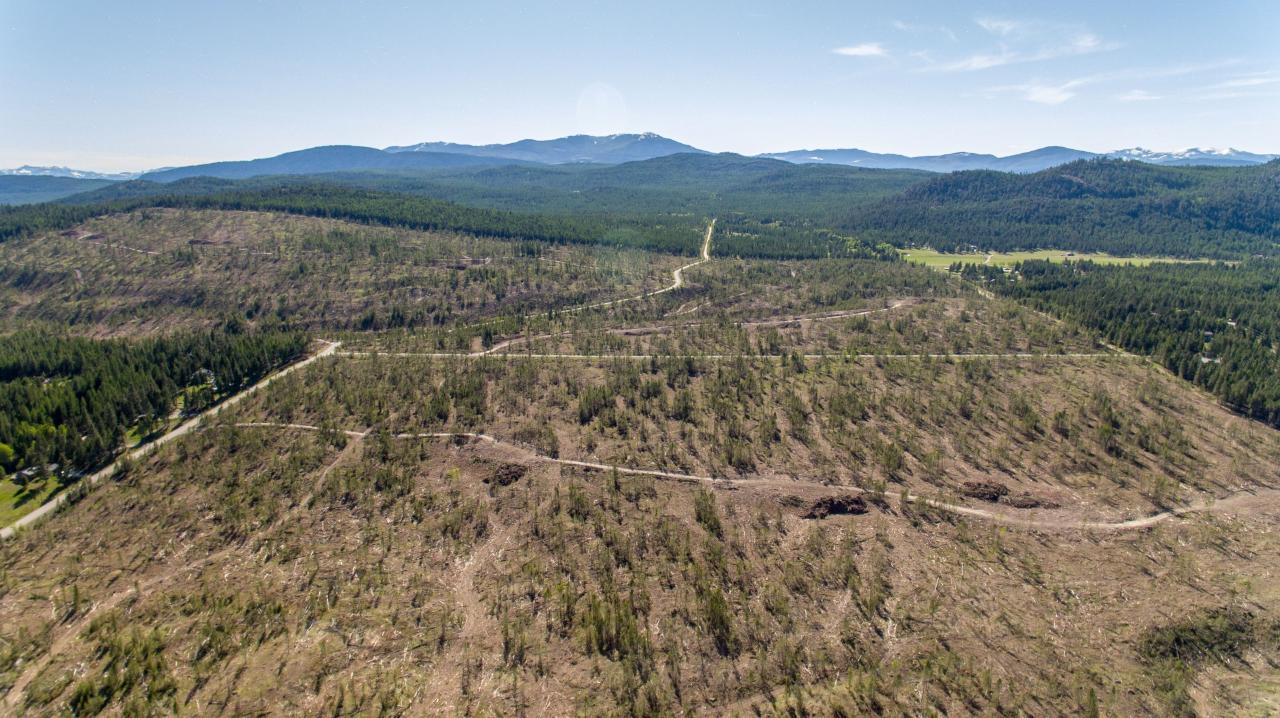 Dl 15050 Highway 93/95, Wasa, British Columbia  V0B 2K0 - Photo 16 - 2458394
