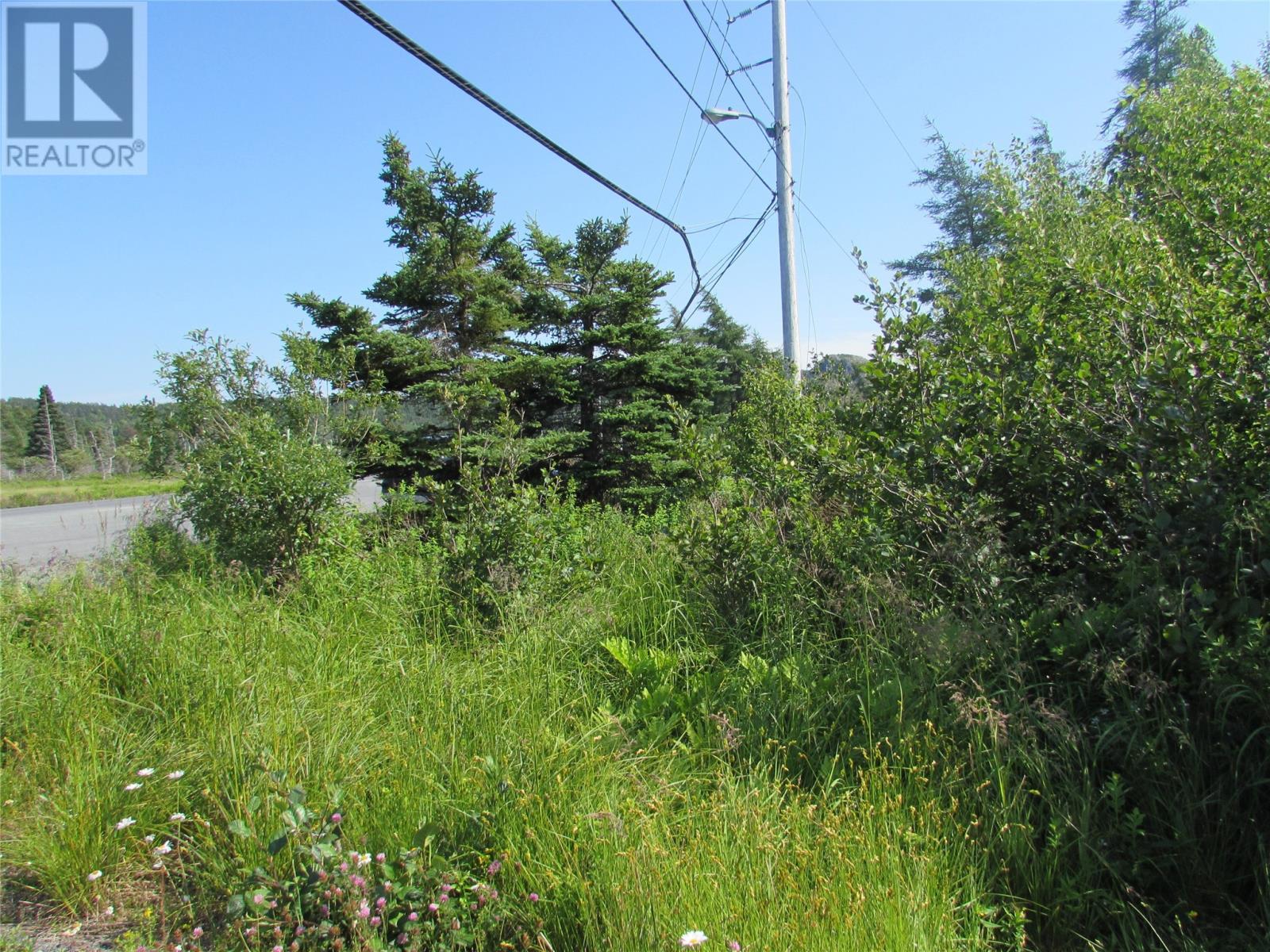 8 Barry's Island Road N, Avondale, Newfoundland & Labrador  A0A 1B0 - Photo 12 - 1230232
